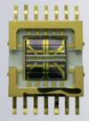 Puce du détecteur TCD